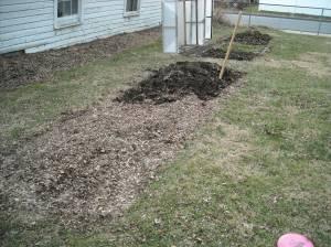 1 Garden Jan 2012