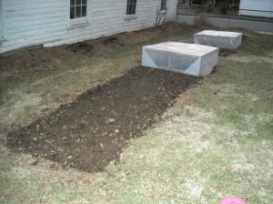 2 Garden Jan 2012