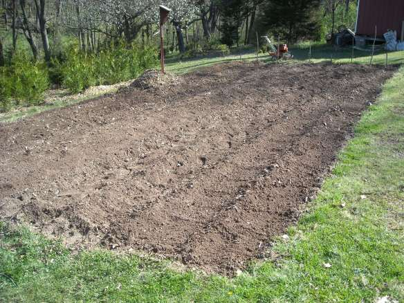 The completed potato patch.