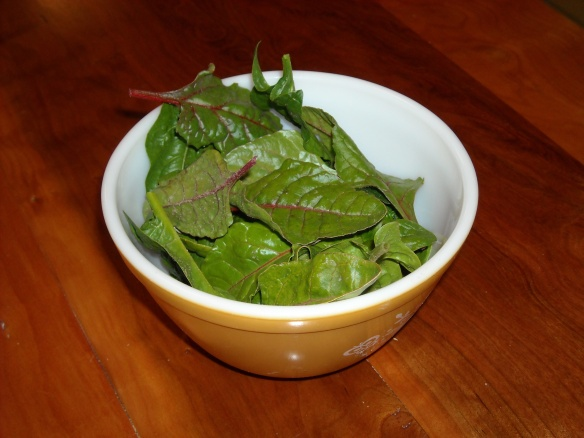 A bowl of spinach and swiss chard.