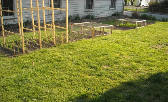 Laying out the new garden plots.