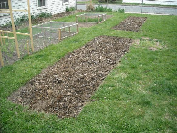 The two new garden plots.