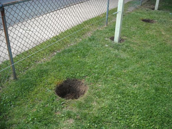 Hole for planting an apple tree.