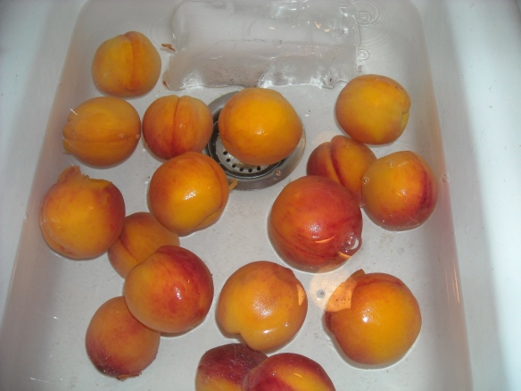 Peaches soaking in cold water.