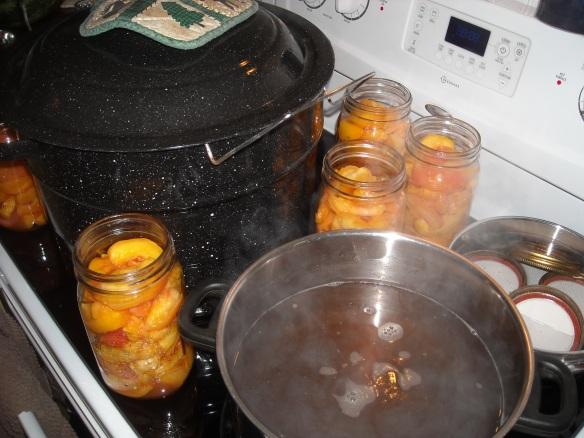 Stove top full of canning supplies for canning peaches.