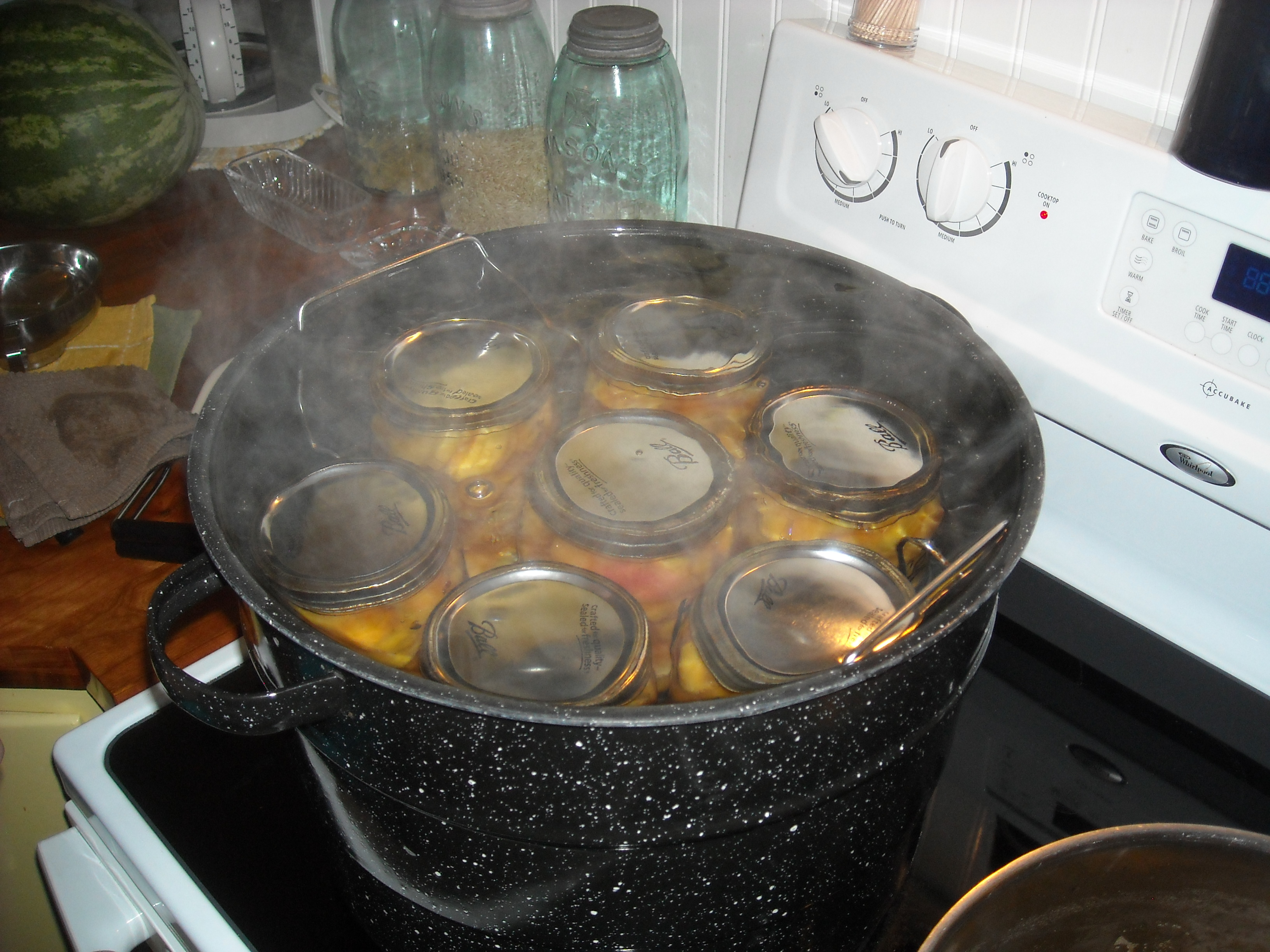 Canner full of jars of peaches.