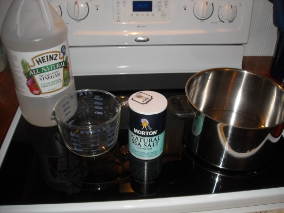 The ingredients for the pickle solution.