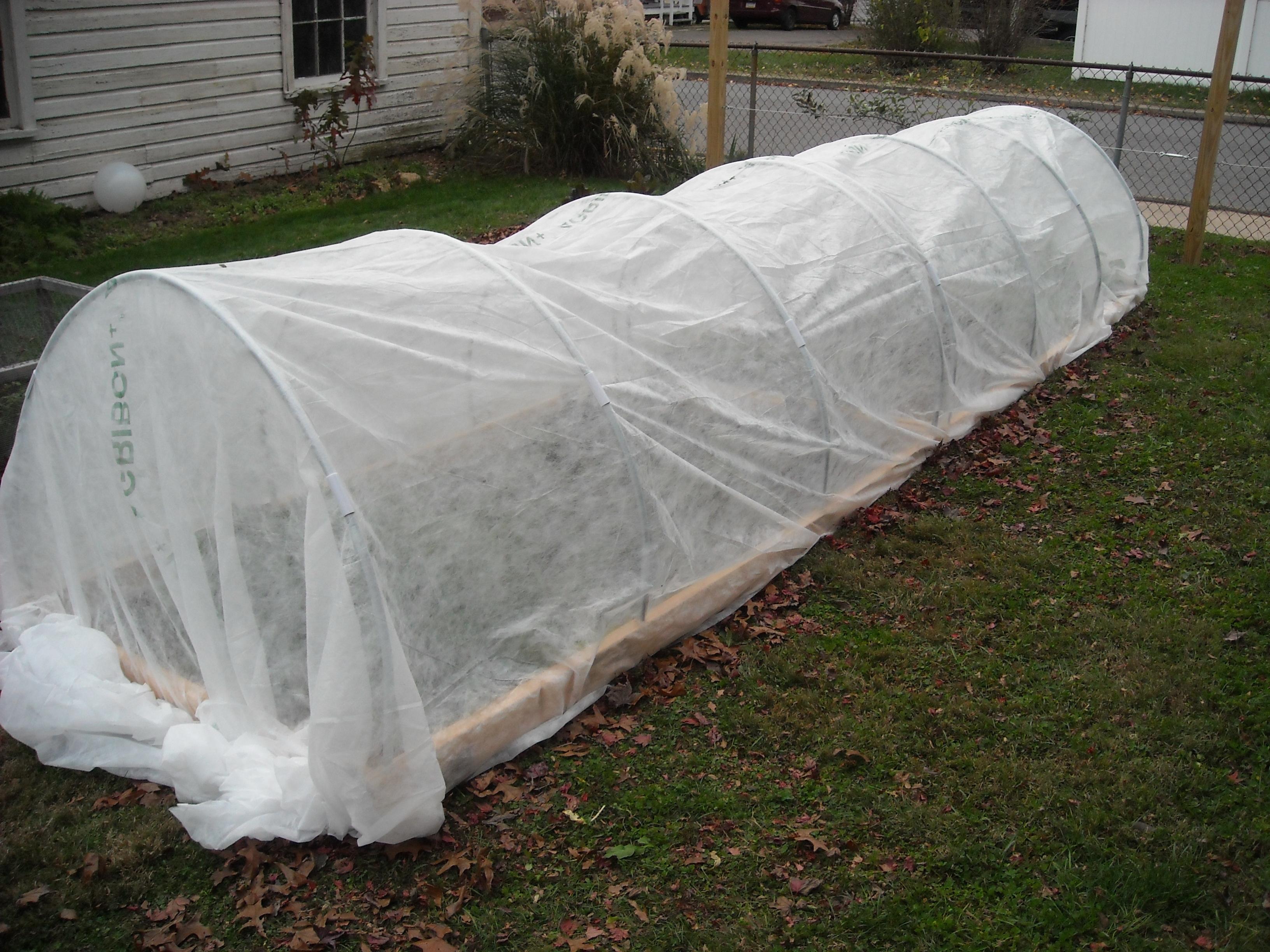 winter garden update u2013 11 7 12 the year round harvest