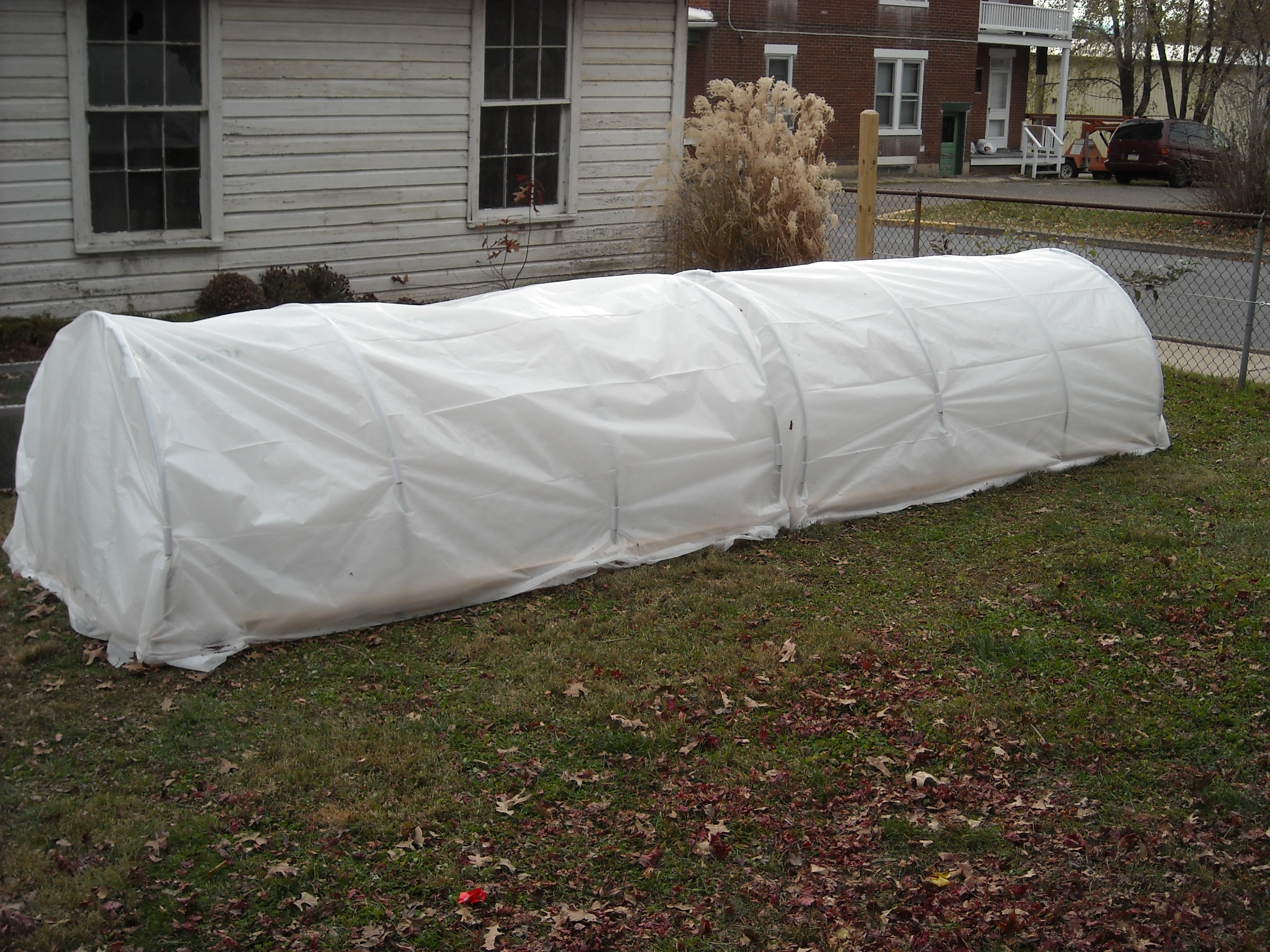 Winter Garden Update – 11-29-12 | The Year Round Harvest