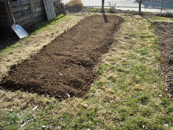 Garden Bed after Double-Digging