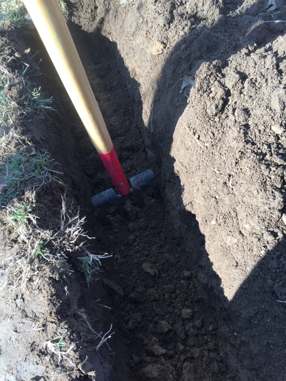 Spading fork in a trench.